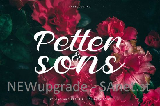 Petter And Sons   Romantic Beauty Script