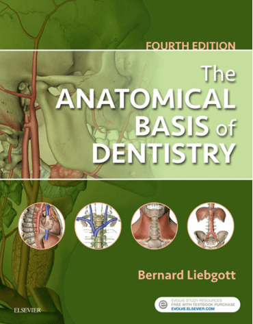 The Anatomical Basis of Dentistry, 4th edition