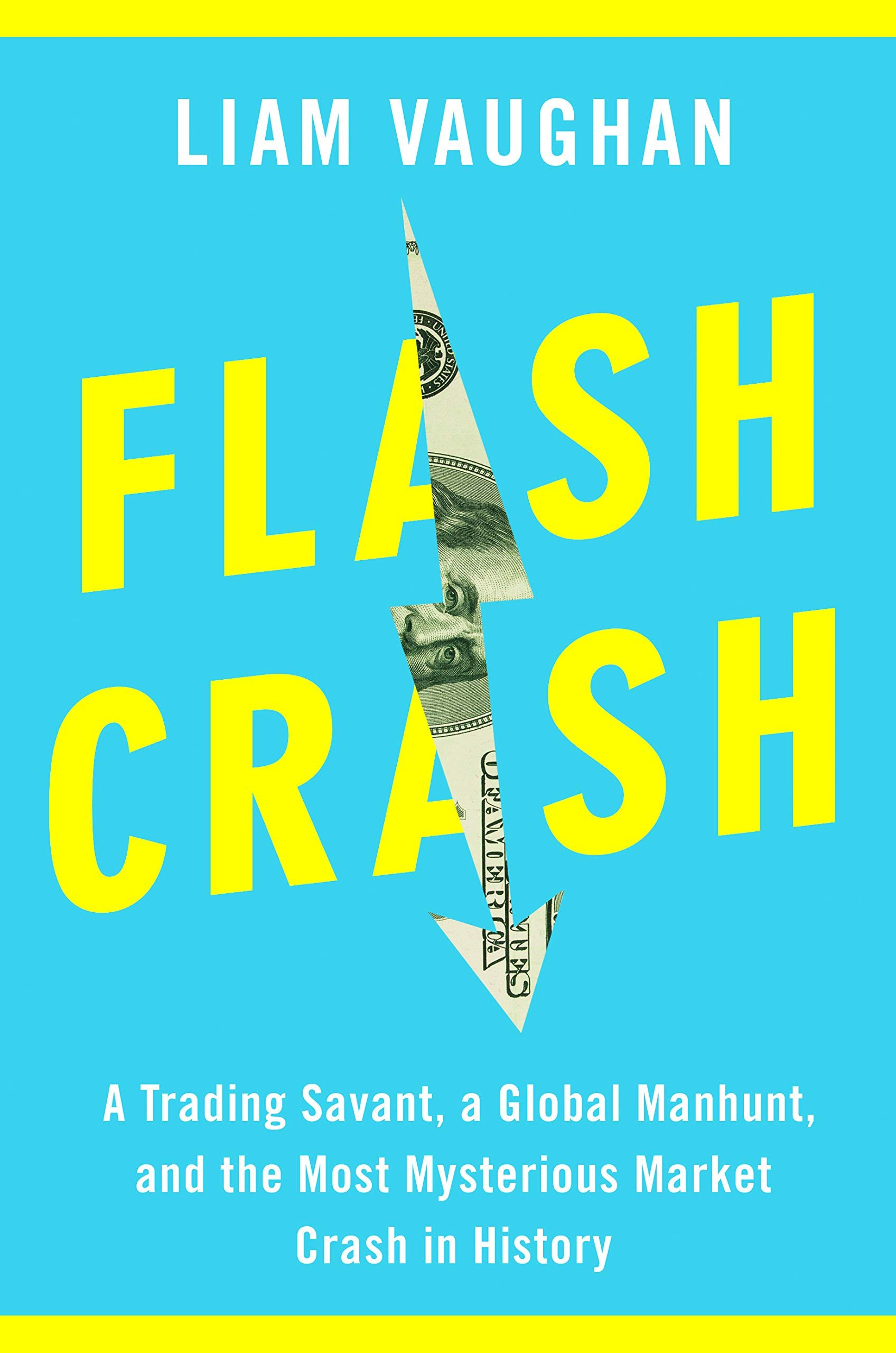 Download Flash Crash: A Trading Savant, A Global Manhunt