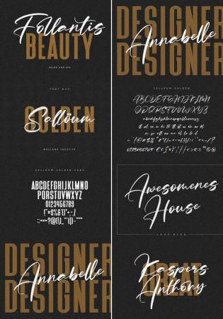 Salloum Golden Font Duo