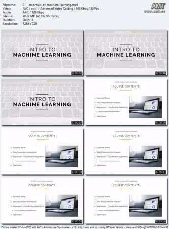 Essentials of Machine Learning