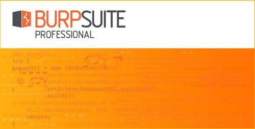 Burp Suite Pro 2020.7 Build 3287