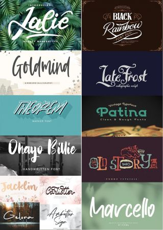 Collection of 13 Creative Fresh Fonts