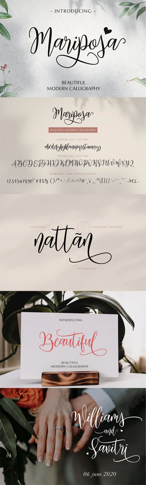 Mariposa - Beautiful Modern Calligraphy