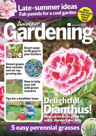 Amateur Gardening   22 August 2020