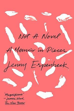 Not a Novel: A Memoir in Pieces