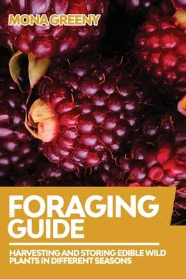 Foraging Guide: Harvesting and Storing Edible Wild Plants in Different Seasons