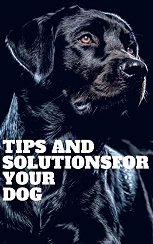 Tips and solutions for your Dog: Simple Tips for Professional Dog Training to Be Successful For You and Your Dog