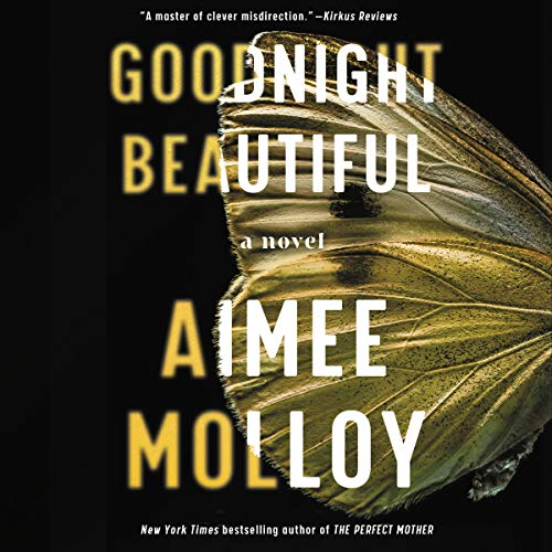 Goodnight Beautiful: A Novel (Audiobook)