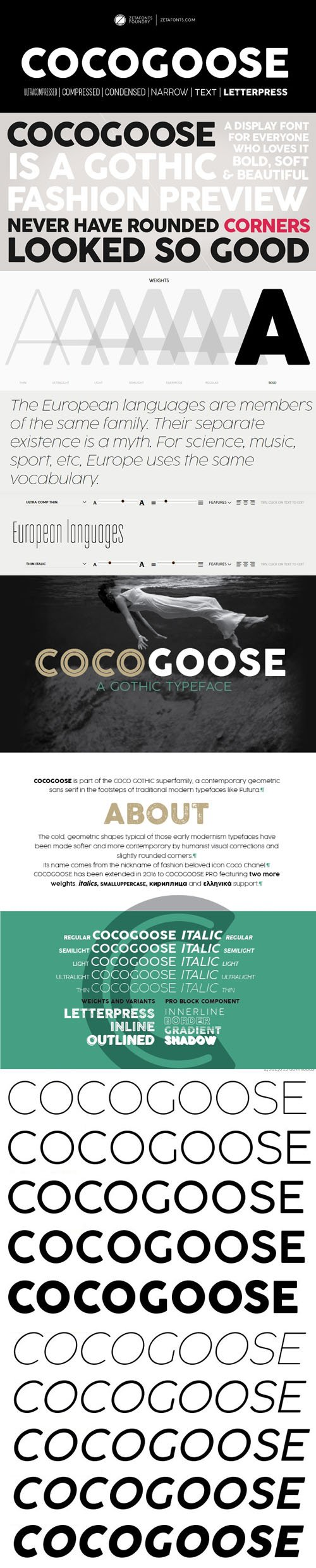 Cocogoose Sans Serif Typeface [10-Weights]