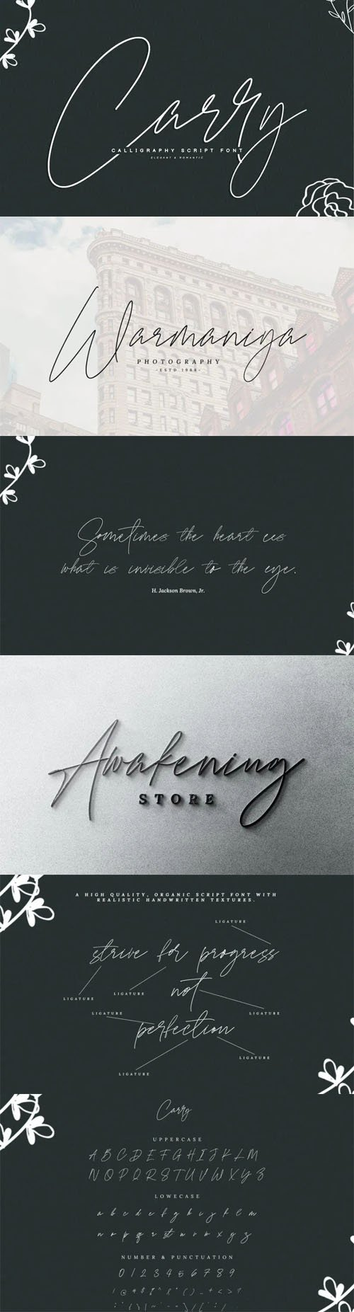Carry - Calligraphy Script Font