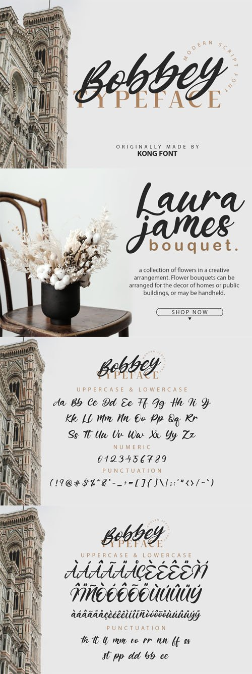 Bobbey Typeface - Modern Scipt Font [2-Weights]