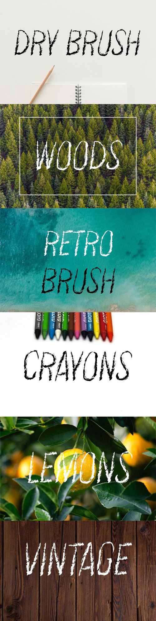 Vintage Dry Brush Script Font