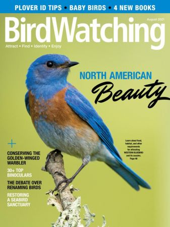 BirdWatching USA - August 2021