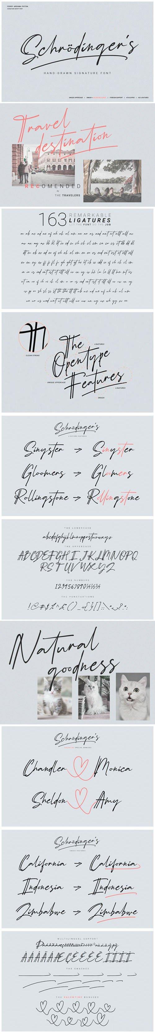 Schrodinger's Signature - Hand-Drawn Remarkable Font
