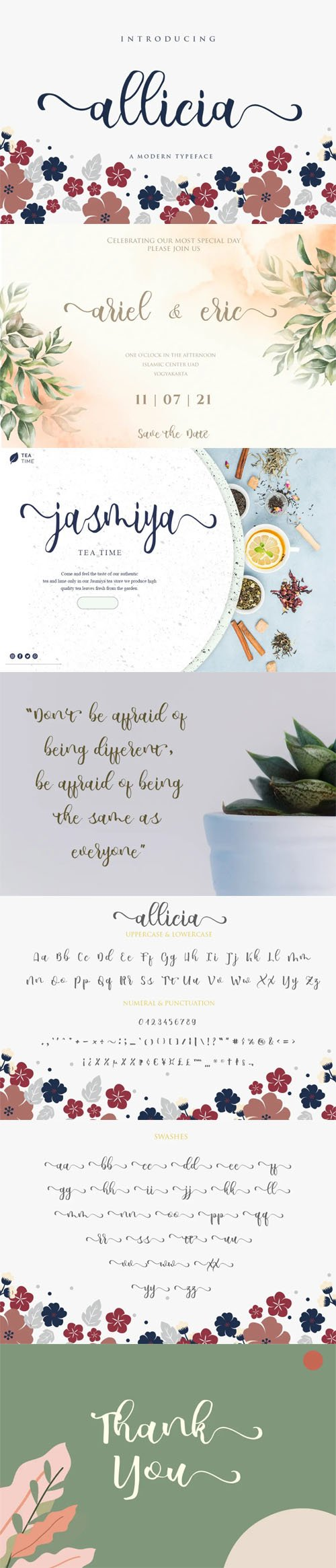 allicia Script - Stylish Feminine Typeface