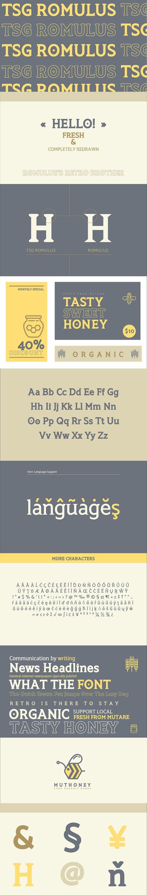 Romulus - Retro Bold Serif Font