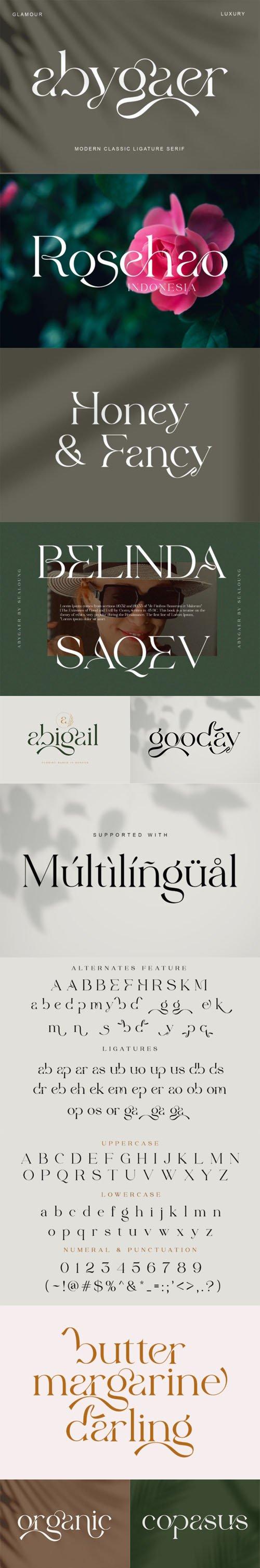 Abygaer Modern Classic Ligature Serif Font
