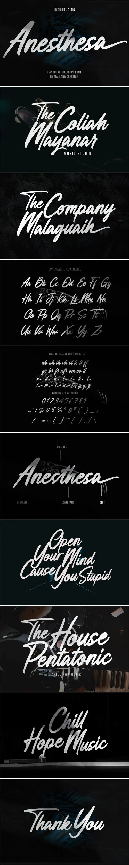 Anesthesa Script - Casual Handcrafted Font