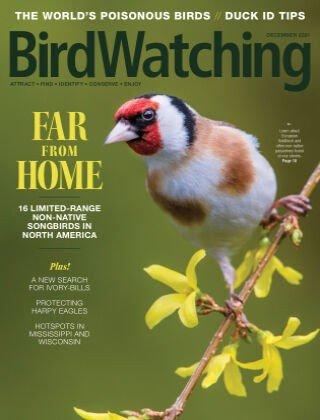 BirdWatching USA - December 2021 (True PDF)