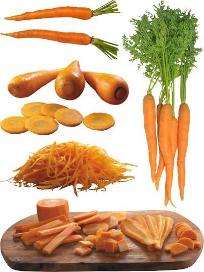 морковка фотостоки #3
