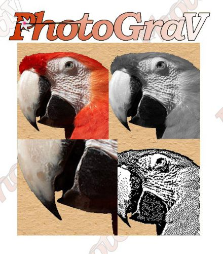 Portable ImageLaz PhotoGraV 3.0.3